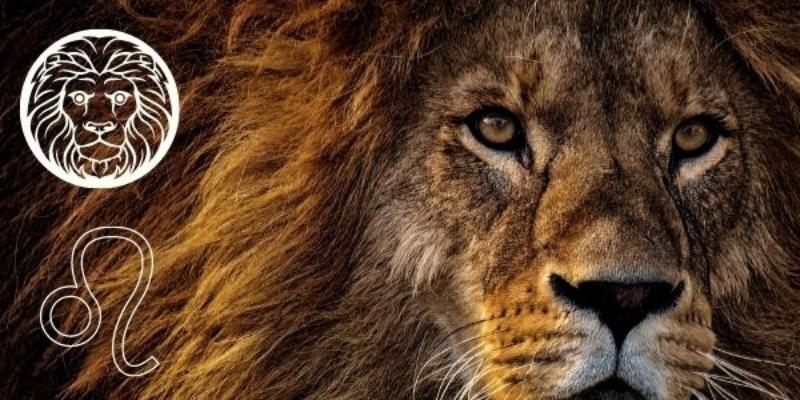 Очаровайте Лъвовете със стилен подарък