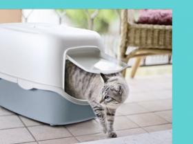 Котешки легла и аксесоари за транспортиране