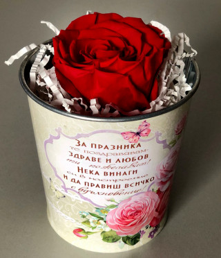 Eternal rose in a pot for mother