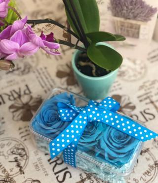 Вечни рози в прозрачна кутия