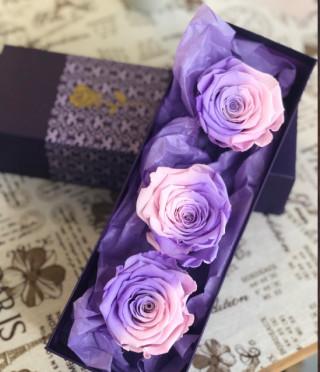 Вечни Рози пастел розово и лавандула
