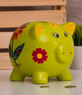 Green Piggy Bank Piggy