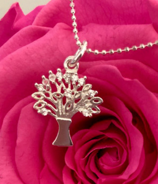 Women's silver necklace the Tree of Life