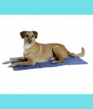 Охлаждащо легло за куче (размери)
