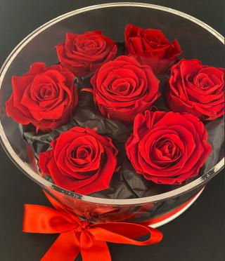 Вечни рози в луксозна прозрачна кутия