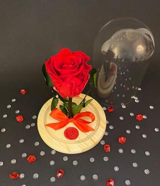 Вечна роза в стъклен купол