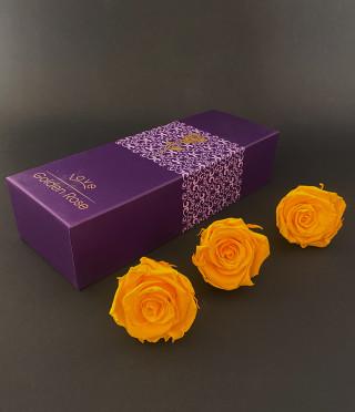 Луксозна кутия с вечни рози