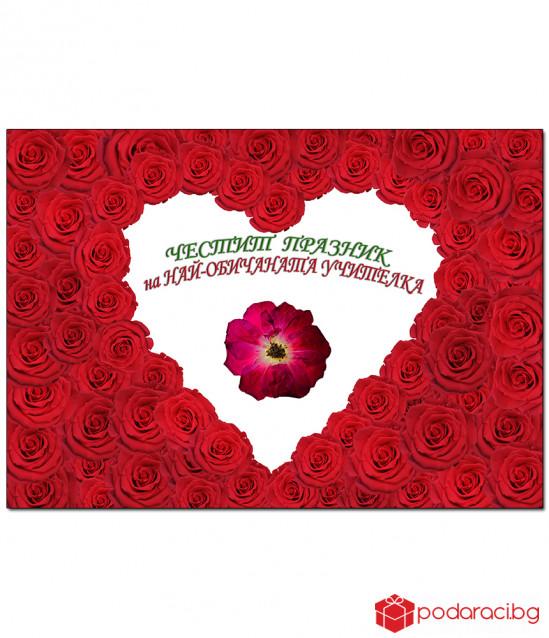 Истинска червена роза за УЧИТЕЛКА в рамка