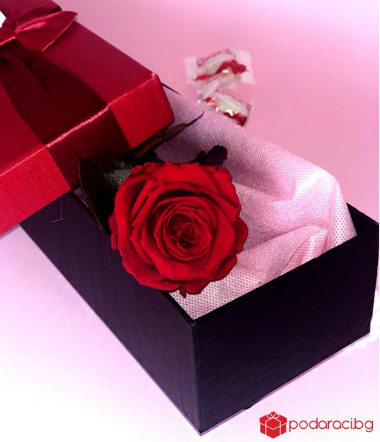 Червена вечна роза и бонбони