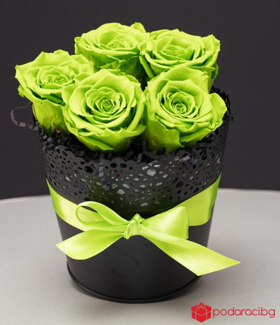 5 Everlasting roses in a black vintage pot