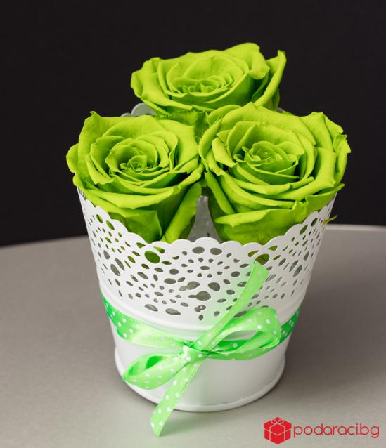 Малка дантелена кашпа в бяло с 3 вечни рози