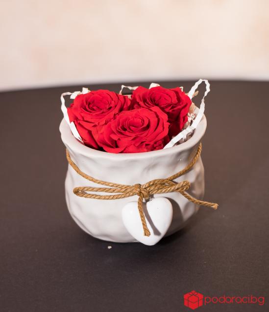 Мини кашпа с червени вечни рози за любимата жена