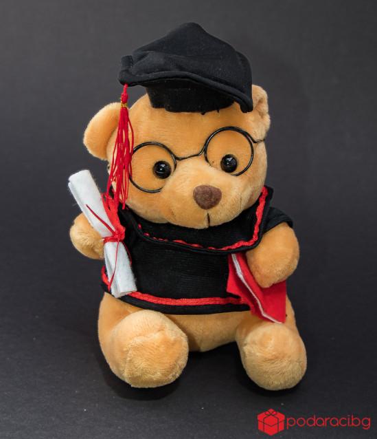 Плюшено мече за дипломиране