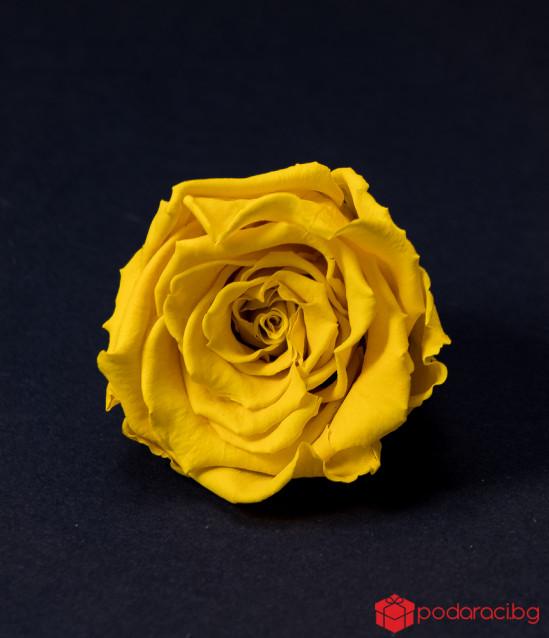 Комплект за съпруга Ранна пролет