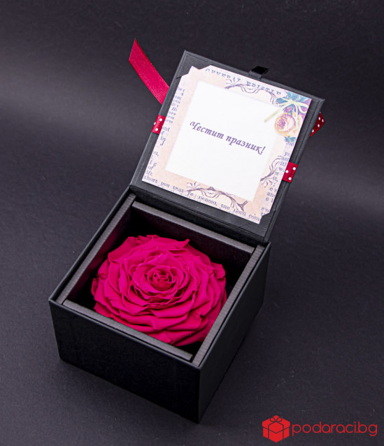 Луксозна вечна роза - циклама