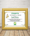 Diploma for programmer with a gift frame