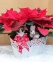 Аранжировка с Коледна звезда