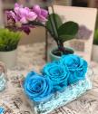 Вечни рози тюркоаз в прозрачна кутия