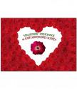 Real Red rose for mother framed