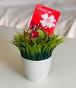 Любовна ламинирана картичка с вградена детелина