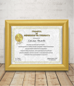 Diploma for Manager of the Year + gift frame