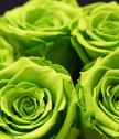Вечни рози във винтидж кашпа