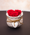 Mini pot with red eternal roses for Beloved woman