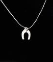 Silver Necklace Horseshoe