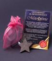 Медальон Звезда с истински метеорит