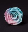 Вечна роза в кашпа за майка