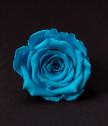 Вечна роза в цветна сфера